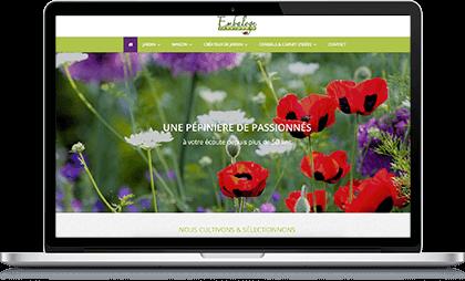 Illustration du site Embaloge sur ordinateur portable