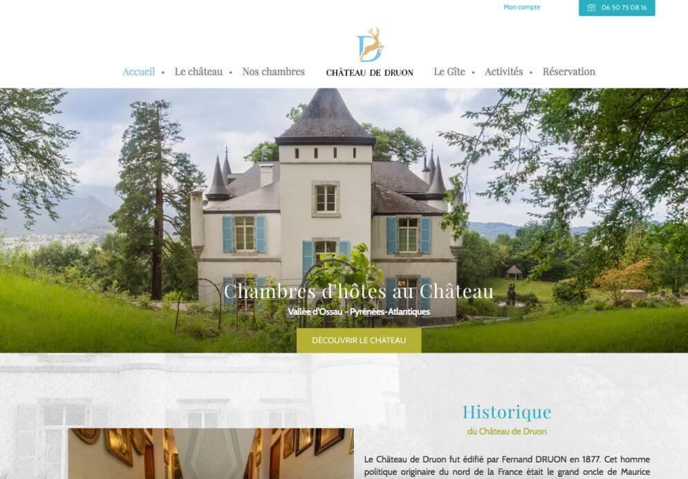 Page d'accueil du site internet Château de Druon