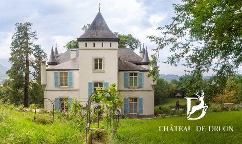 Chambres d'hôtes au Château de Druon