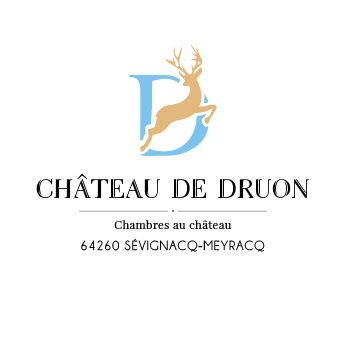 Logo Château de Druon